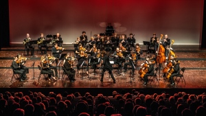 Orchestre EUROPE (1)